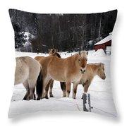 40104-5 Norwegian Horses Throw Pillow