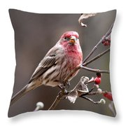 4113-005 - Fb Throw Pillow