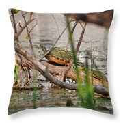 42- Florida Red-bellied Turtle Throw Pillow