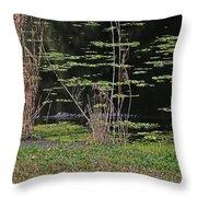 44- Alligator - Great Blue Heron Throw Pillow