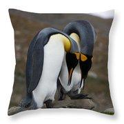 King Penguins Throw Pillow