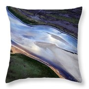 Aerial Photo Throw Pillow
