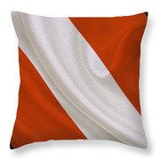 Chicago Bears Throw Pillow