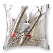 4817-003 - Fb Throw Pillow