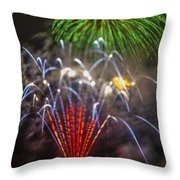 4th Of July Through The Lens Baby Throw Pillow
