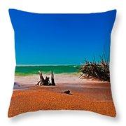 4x1 Florida Beach Panorama 732 Throw Pillow