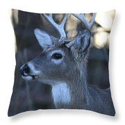 8 Point Buck Throw Pillow