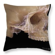 Anatomy Of The Skull Throw Pillow