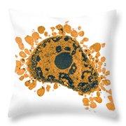 Apoptosis, Human Lymphocyte, Tem Throw Pillow