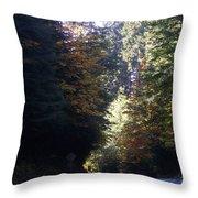 Autumn 4 Throw Pillow