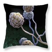 Black Mold Spores Throw Pillow