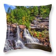 Blackwater Falls Throw Pillow