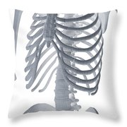 Bones Of The Torso Throw Pillow