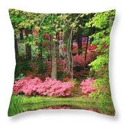 Callaway Gardens Throw Pillow