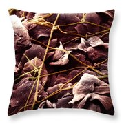 Candida And Epithelial Cells Throw Pillow