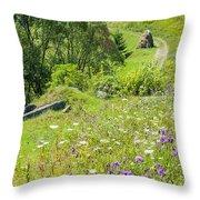 Carpathians Landscape Throw Pillow