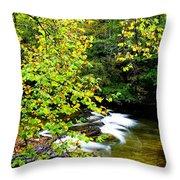 Cherry Falls Elk River Throw Pillow