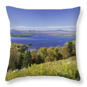 Colorful Fall Forest Near Rangeley Maine Throw Pillow