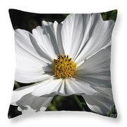 Cosmos Named Sensation Alba Throw Pillow