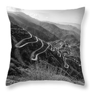 Curvy Roads Silk Trading Route Between China And India Throw Pillow