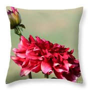 Dahlia Named Caproz Jerry Garcia Throw Pillow