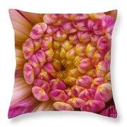 Dahlia Named Siemen Doorenbosch Throw Pillow