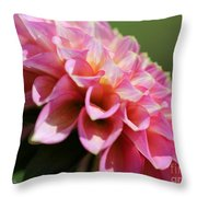 Dahlia Named Skipley Spot Of Gold Throw Pillow