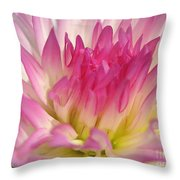 Dahlia Named Star Elite Throw Pillow