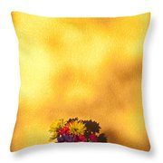 Daisies In A Vase On Shelf Throw Pillow