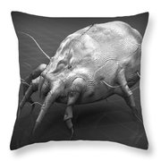 Dust Mite Throw Pillow