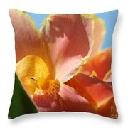 Dwarf Canna Lily Named Corsica Throw Pillow by J McCombie