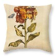Erucarum Ortus Throw Pillow
