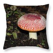 Fairy Mushrooms Throw Pillow