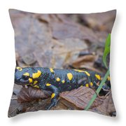 Fire Salamander Throw Pillow