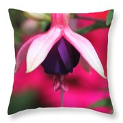 Fuchsia Named Lambada Throw Pillow