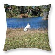 Great White Heron Throw Pillow