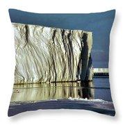 Iceberg In The Ross Sea Antarctica Throw Pillow