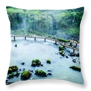 Iguassu Falls In Brazil Throw Pillow