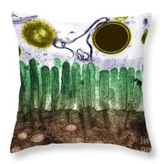 Intestine Throw Pillow