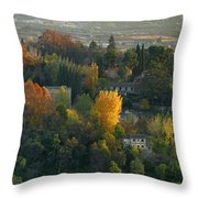 The Alhambra Palace Throw Pillow