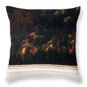Lake In Autumn Throw Pillow