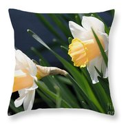 Large-cupped Daffodil Named Mrs. R.o. Backhouse Throw Pillow