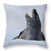 Leopard Seal Throw Pillow