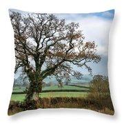 Lower Bruckland - Devon Throw Pillow