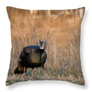 Male Eastern Wild Turkey Throw Pillow