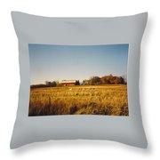 Michigan Barn Throw Pillow