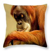 Orang Utan Throw Pillow