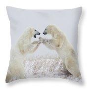 Polar Bears Play Fighting Along The Throw Pillow