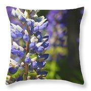 Purple Lupine Flowers Throw Pillow