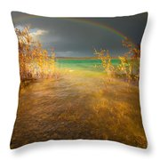 Rainbow And Dark Clouds Over Large Lake Throw Pillow